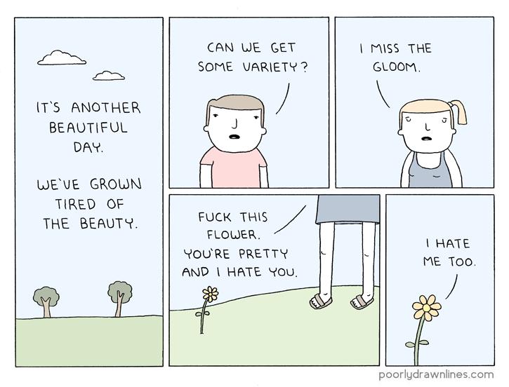 the-beauty